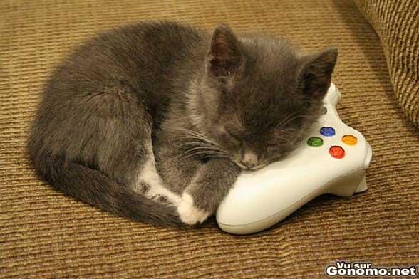 Tellement mignon que je n oserai meme pas le reveiller pour jouer a la console