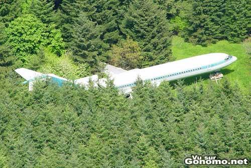 Un avion perdu dans une foret