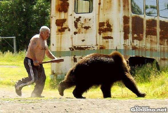 Il fait fuir un ours avec une batte de baseball