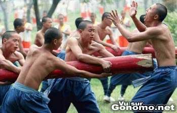 Quel art martial necessite un traitement aussi violent ??