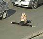 Une blonde fait chier tout le monde en faisant sa gymnastique sur le bitume