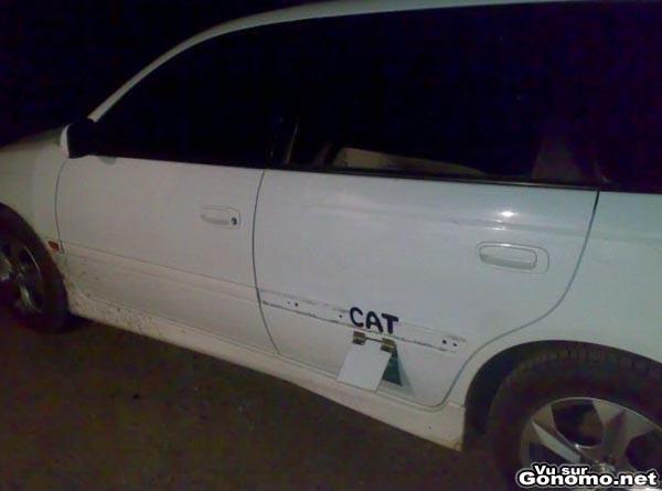 chatiere insolite une chatiere pour chat fait maison dans la porte d une voiture chatiere. Black Bedroom Furniture Sets. Home Design Ideas