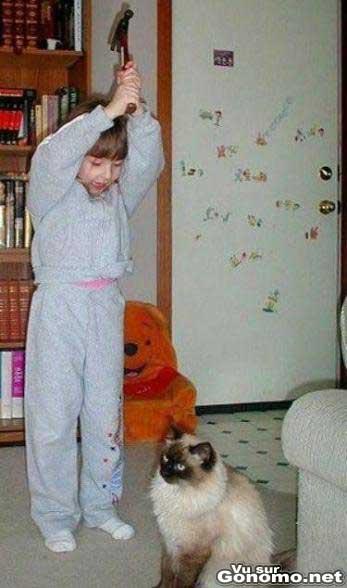 Elle va lui faire sa fete a ce petit chat :p
