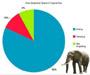 Voici en graphiques la journee typique d un elephant, d un panda et d un meduse :)