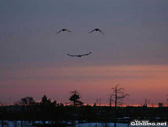 La nature vous sourit !