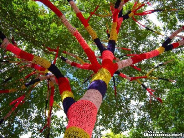 On a tricote une ptite laine pour cet arbre