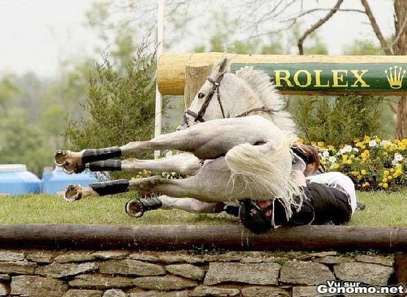 Chute de cheval : les cervicales du cavalier vont prendre cher sous le poid de son cheval ! :s