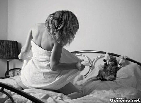 Un chat chanceux avec sa maitresse nue sous sa serviette qui lui fait un strip tease sur le lit