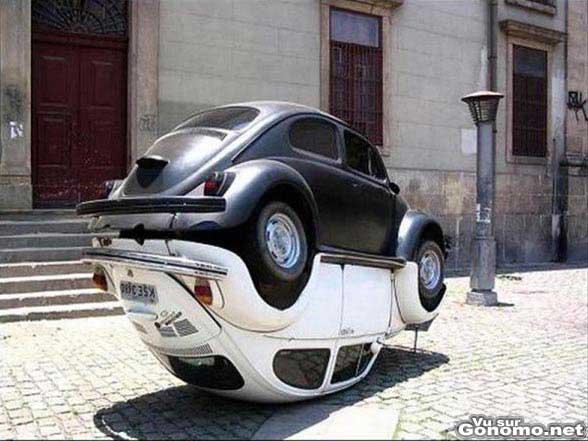 La parade nuptiale des coccinelles ! Les voitures pas les insectes ... :p